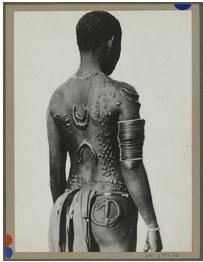 Tatouage « brodé »sur le dos d'un indigène. Edmond Demaitre. Musée du Quai Branly.