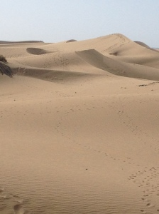 dunes-de-maspalomas